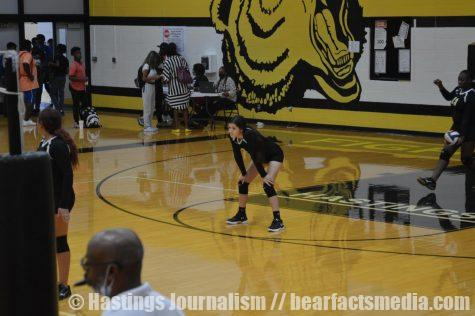 Gallery: JV Volleyball vs Royal